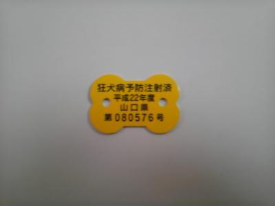 SH3F0103.jpg