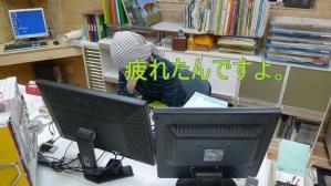 P1030942-s.jpg
