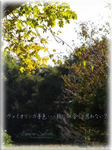 625-1.jpg