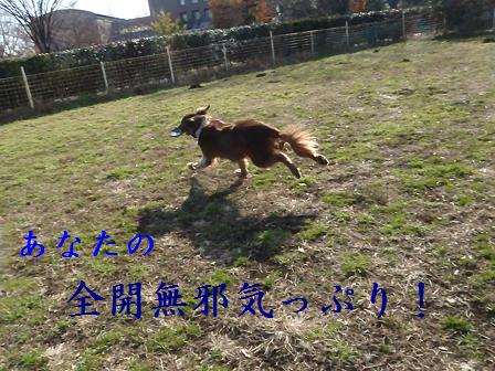 jumpingSORA16DEC11 043