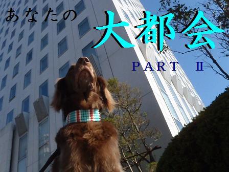 daitokai12DEC11 029