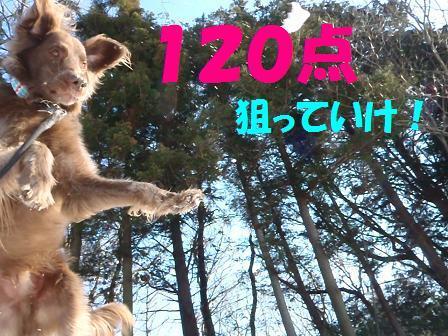 B120コピー ~ 29JAN12 147