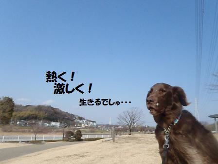 Bコピー ~ コピー ~ 01FEB12 061