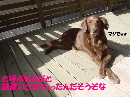 Eコピー (4) ~ 18MAR12 011kame