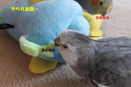 二人(鳥)がかりで・・