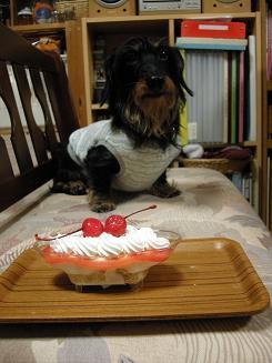 2009.11.22log birthday 8th (1)