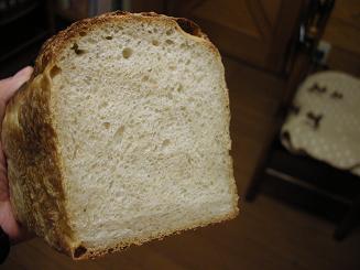 2010.1.22 過発酵の山食 (1)