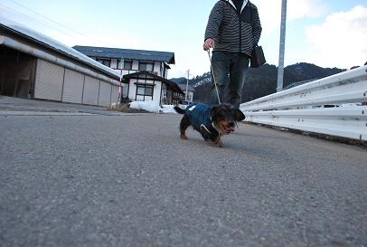 2010.2.20ログの散歩 007