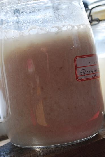 2010.2.27酒粕酵母(原) (8)