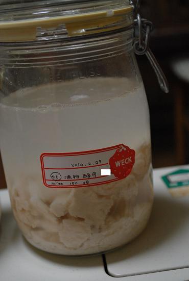 2010.2.27酒粕酵母(原) 1時間後