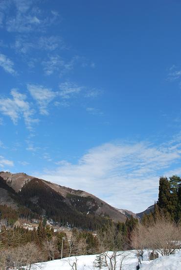 2010.2.26六里山の雪解け (17)