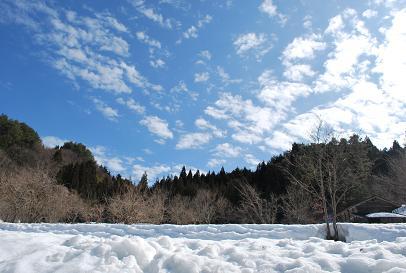 2010.2.26六里山の雪解け (11)