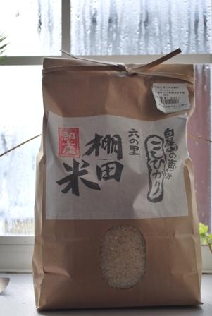 2012.1.15お米の酵母 003
