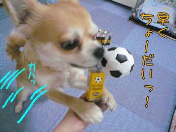 komusan_0214_002