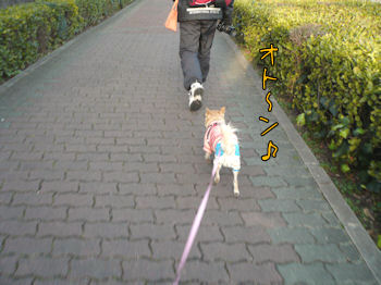 komusan_0224_001