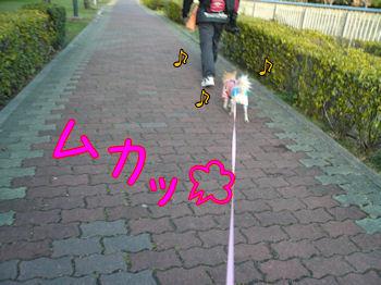 komusan_0224_003