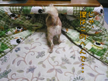 komusan_0316_0006