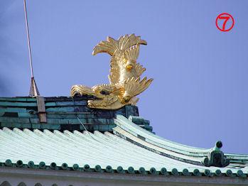 komusan_0322_007