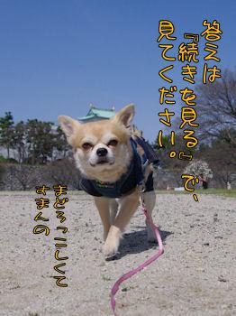 komusan_0322_008