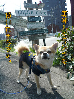 komusan_0328_003
