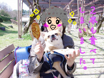 komusan_0324_005