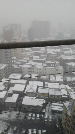 201202雪