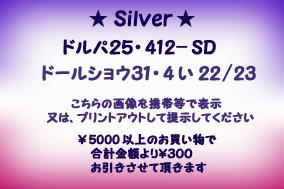ds31-dp25.jpg