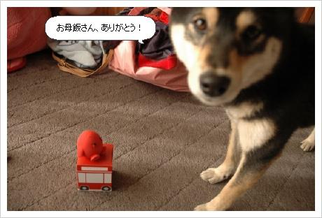 image1537819.jpg