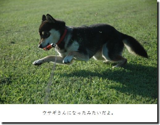 image2615988.jpg
