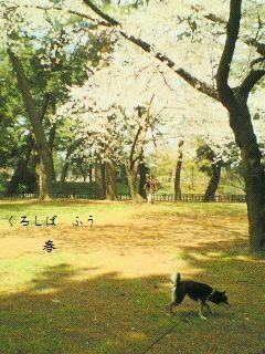 image2713921.jpg