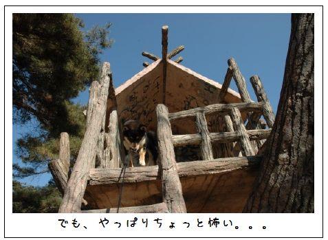 image4138915.jpg