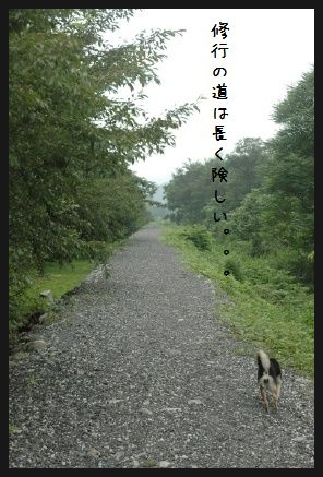 image5482549.jpg