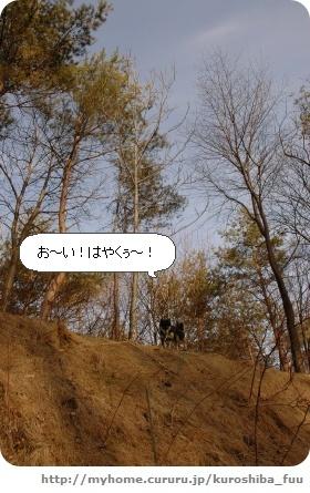 image6120736.jpg