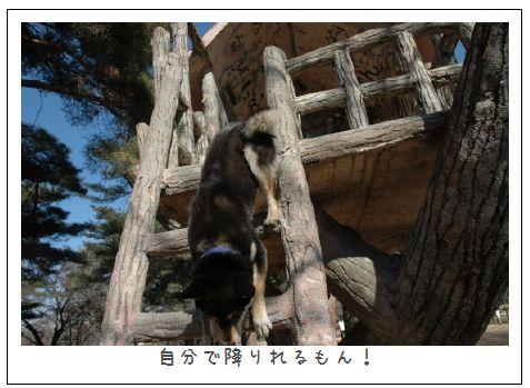 image6801494.jpg