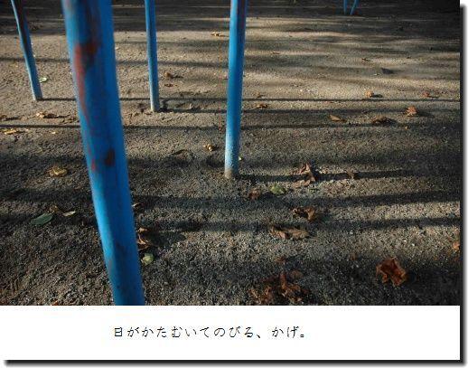 image6959737.jpg