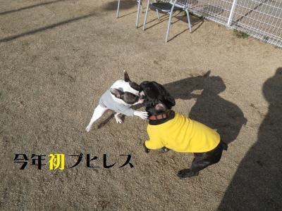 10_20110112223904.jpg