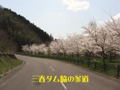 14_20100428003152.jpg