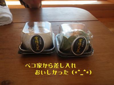 15_20101217164437.jpg