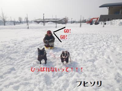 16_20110208085550.jpg