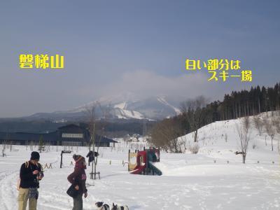 19_20110208085619.jpg