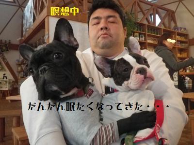 20_20101217164458.jpg