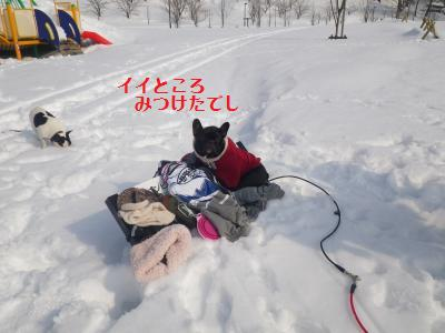 20_20110208085618.jpg