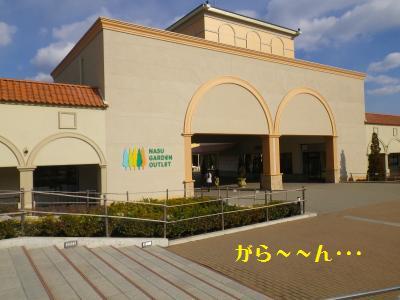 2_20110112223822.jpg