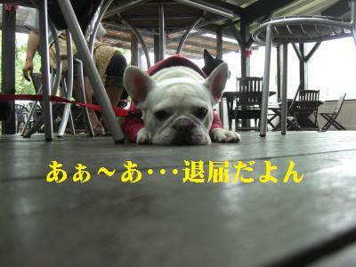 30_20100604123851.jpg