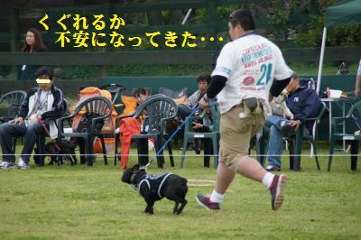 31_20100604123919.jpg