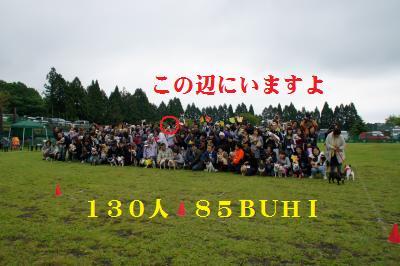 33_20100604123919.jpg