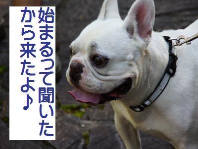 39_20101019094118.jpg