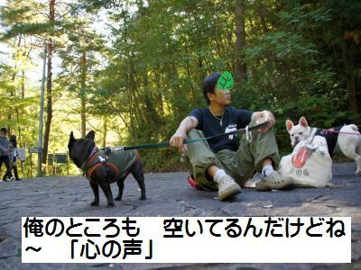 58_20101025212609.jpg