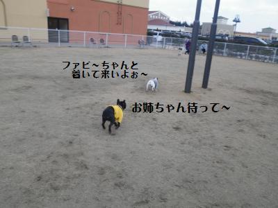5_20110112223820.jpg