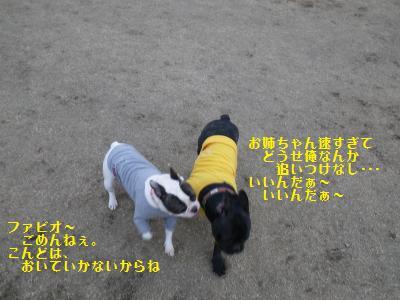 6_20110112223820.jpg